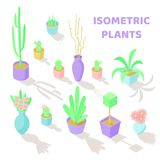 Set of vector isometric plants. And flowers icons. Interior decoration. Different types of gardening objects Royalty Free Stock Image
