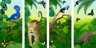 Set of vector Jungle rainforest vertical baners with jaguar or leopard, North Sulawesi babirusa, diamond lady amherst`s pheasan, stock illustration