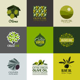 Set of vector labels and emblems with olive branch Royalty Free Stock Photos