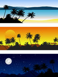 Set of vector landscapes with palm trees Royalty Free Stock Images