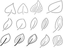 Set of vector leaf Stock Photo