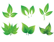 Set of vector leaves Royalty Free Stock Photos