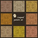 Set of vector leopard  backgrounds Royalty Free Stock Photo
