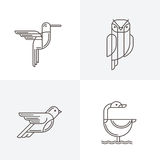 Set of vector line art logo with birds. Outline illustrations of hummingbird Royalty Free Stock Photos