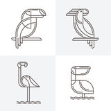 Set of vector line art logo with exotic tropical birds. Stock Image