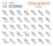 Set Vector Line Icons of Freshwater Fish. Set of vector line icons, sign and symbols with flat elements of freshwater fish for modern concepts, web and apps Stock Images