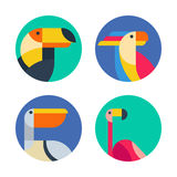 Set of vector logo, badges, labels with exotic tropical birds. Royalty Free Stock Photos
