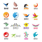 Set of vector logos birds Stock Photos
