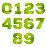 Set of vector numbers made from green leaves royalty free illustration