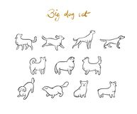 Set of vector outline dogs. Cartoon style. Set of vector outline dogs, isolated on white background. Cartoon style Stock Photography