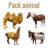 Pack animals set stock photography