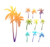 Palm Trees Silhouettes. Set Of Vector Photo Realistic Palm Trees Bright Silhouettes With Various Lighting Royalty Free Stock Image