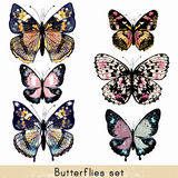 Set of vector realistic colorful butterflies for design Royalty Free Stock Photo