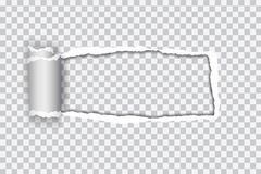 Set vector realistic illustration of transparent torn paper with. Rolled edge on transparent background with frame for text vector illustration