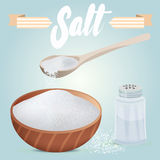 Set of vector salt shaker, full wooden bowl and spoon. Salt scattered on table. Set of vector salt shaker, full wooden bowl and spoon Stock Images