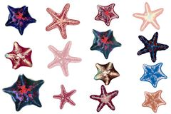 Set of vector sea starfishes for design stock photo
