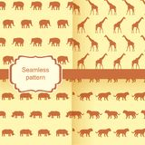 Set of vector seamless background with animals - elephants, giraffes, rhinos, tigers Stock Image