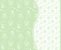 Set of vector seamless floral backgrounds. Set of vector seamless floral backgrounds in green tones. eps 8 Stock Photography