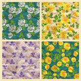 Set of vector seamless pattern with roses, craft p Stock Photos