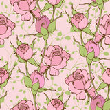 Set of vector seamless pattern with roses Stock Photos