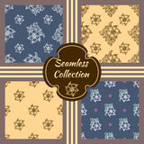 Set of vector seamless textures. Collection of patterns with hand drawn floral elements Stock Photography