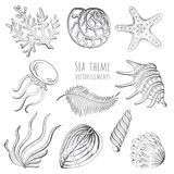 Set of vector seashells, starfish and jellyfish on white background for design. Vector illustration. Set of vector seashells, starfish and jellyfish on white Royalty Free Stock Photography