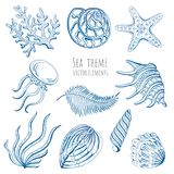 Set of vector seashells, starfish and jellyfish on white background for design. Vector illustration. Set of vector seashells, starfish and jellyfish on white Royalty Free Stock Photos
