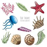 Set of vector seashells, starfish and jellyfish on white background for design. Vector illustration. Set of vector seashells, starfish and jellyfish on white Royalty Free Stock Photo