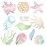 Set of vector seashells, starfish and jellyfish on white background for design. Vector illustration. Set of vector seashells, starfish and jellyfish on white Stock Photography