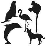 Set of vector silhouettes of animals. Vector silhouettes of seal, dog, flamingo, dolphin and monkey royalty free illustration