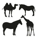 Set of vector silhouettes of animals Stock Images