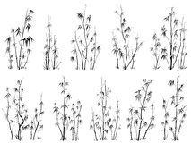 Set of vector silhouettes of bamboos. Stock Image