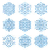 Set of Vector Snowflakes. Set of vector blue snowflakes. Fine winter ornament. Snowflakes collection. Snowflakes for backgrounds and designs Royalty Free Stock Photos