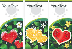 Set of vector stickers with fruits hearts. Vector collection set of stickers with vector fruits hearts and flowers royalty free illustration