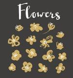 Set of vector stylish grunge gold flowers. Royalty Free Stock Photos