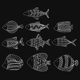 Set of vector stylized fishes. Collection of aquarium fish. Linear Art. Illustration for children. Set of vector stylized fishes. Collection of aquarium fish Royalty Free Stock Images