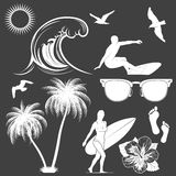Set of vector surfing design elements Royalty Free Stock Image
