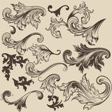 Set of vector swirls in vintage style for design Stock Photography