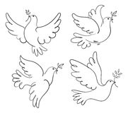 Set of vector symbols dove of peace Stock Image