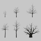 Set of vector trees black silhouettes without leaves Royalty Free Stock Photography