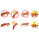 Set of vector tropical insect pictures on white background. Vector isolated drawing. Illustration icon in flat style. stock illustration