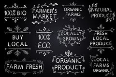 Set of VECTOR typographic elements on chalkboard. Farmers market, farm fresh eco food on white background. Green lines. Set of VECTOR typographic elements on Stock Photo