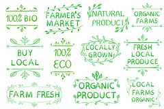 Set of VECTOR typographic elements. Farmers market, farm fresh eco food on white background. Green lines. Royalty Free Stock Photo