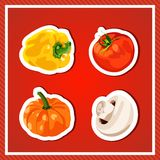 Set of vector vegetables.  vegetables. Fresh and healthy food. Diet. Bright, juicy vegetables on a red background. Royalty Free Stock Photography