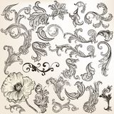 Set of vector vintage swirls for design Stock Image