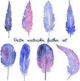 Set of vector watercolor hand drawn feathers Royalty Free Stock Photography