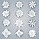 Set of vector white paper flowers. For decoration Stock Illustration