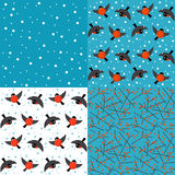 Set of vector winter backgrounds Stock Image