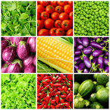 Set of vegetable backgrounds Stock Images