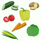 Set of vegetable. Carrots, cucumber, cabbage. Set of vegetable on white background. Carrots, cucumber, cabbage, corn tomato potatoes stock illustration
